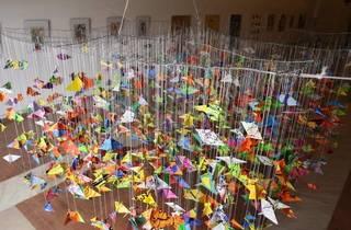 projecto mil pássaros