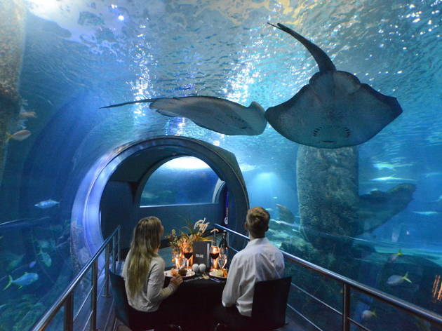 Melbourne Aquarium private dining