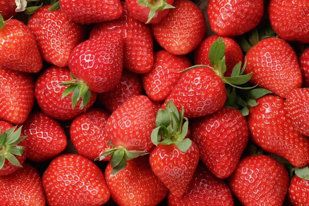 Strawberry picking in New York: What the PYO season will look like this summer