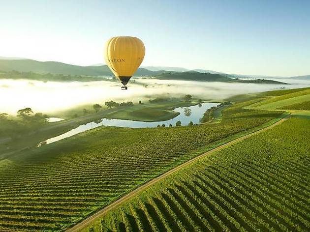 Hot air balloon in the Yarra Valley