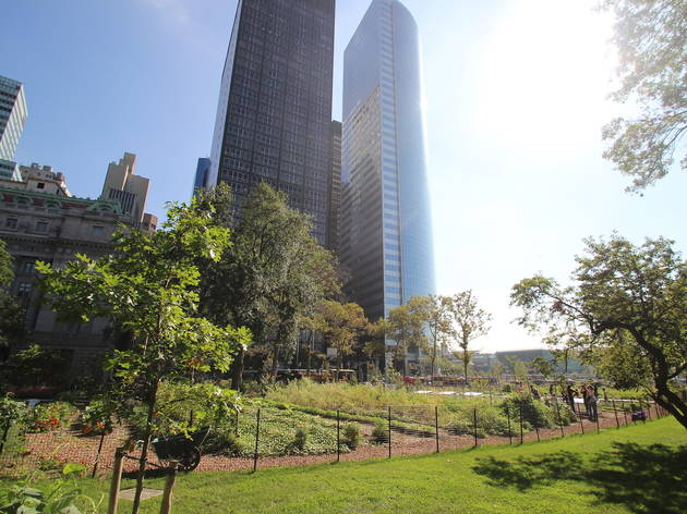 A Michelin-starred chef takes over a farm in One World Trade's backyard