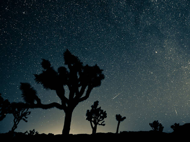 The Perseid meteor shower is set to peak this month