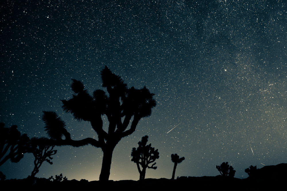 The Perseid meteor shower peaks this week