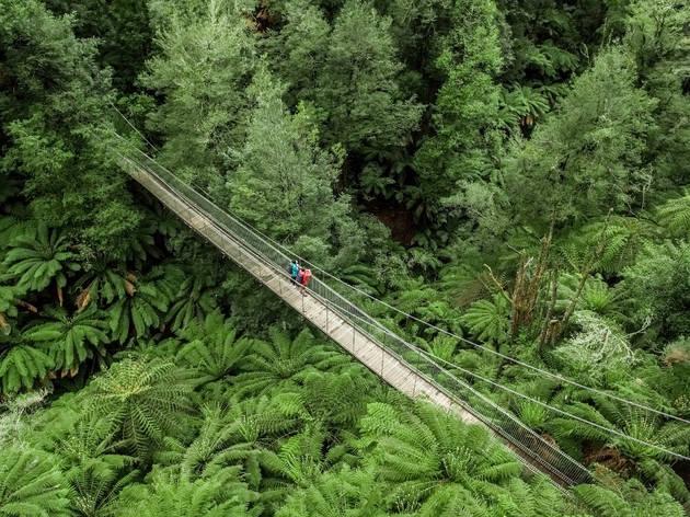 Tarra Bulga Swing Bridge