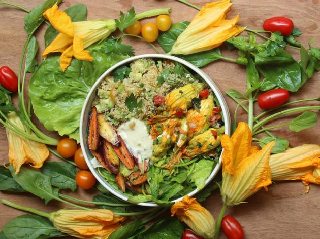 comida vegana con flor de calabaza