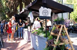 mercado el 100, mercado local de productos orgánicos
