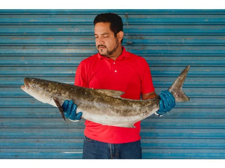 Nuestra Pesca, comercializadora de pesca artesanal mexicana