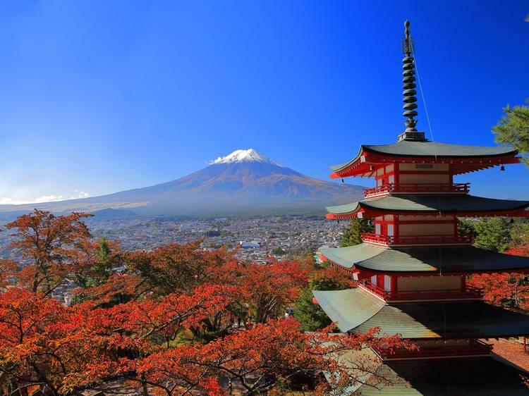 新倉富士浅間神社の忠霊塔