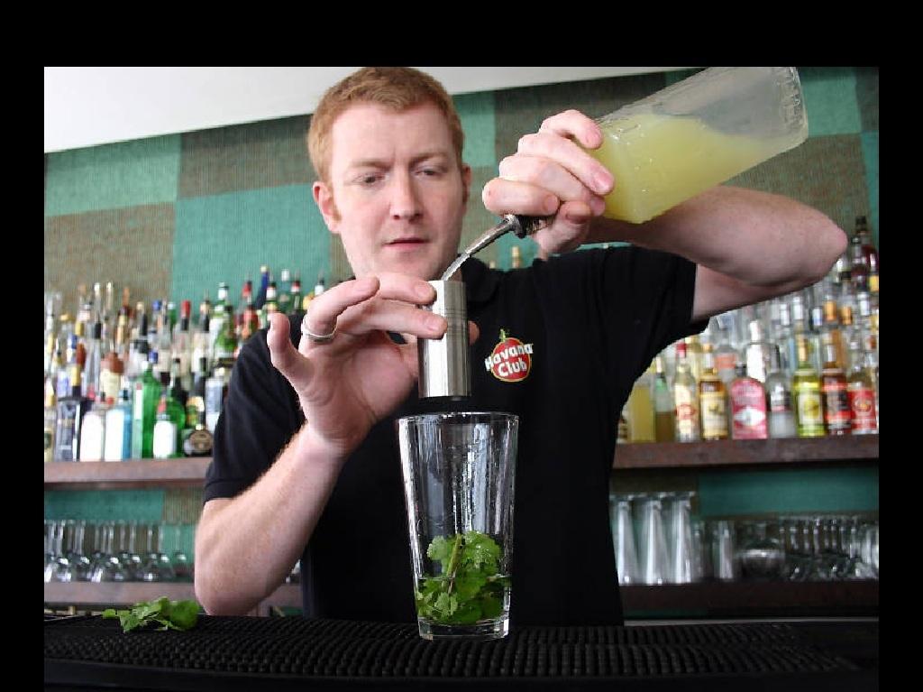 Noite, Bar, Cocktail, Gin Garden, Cinco Lounge
