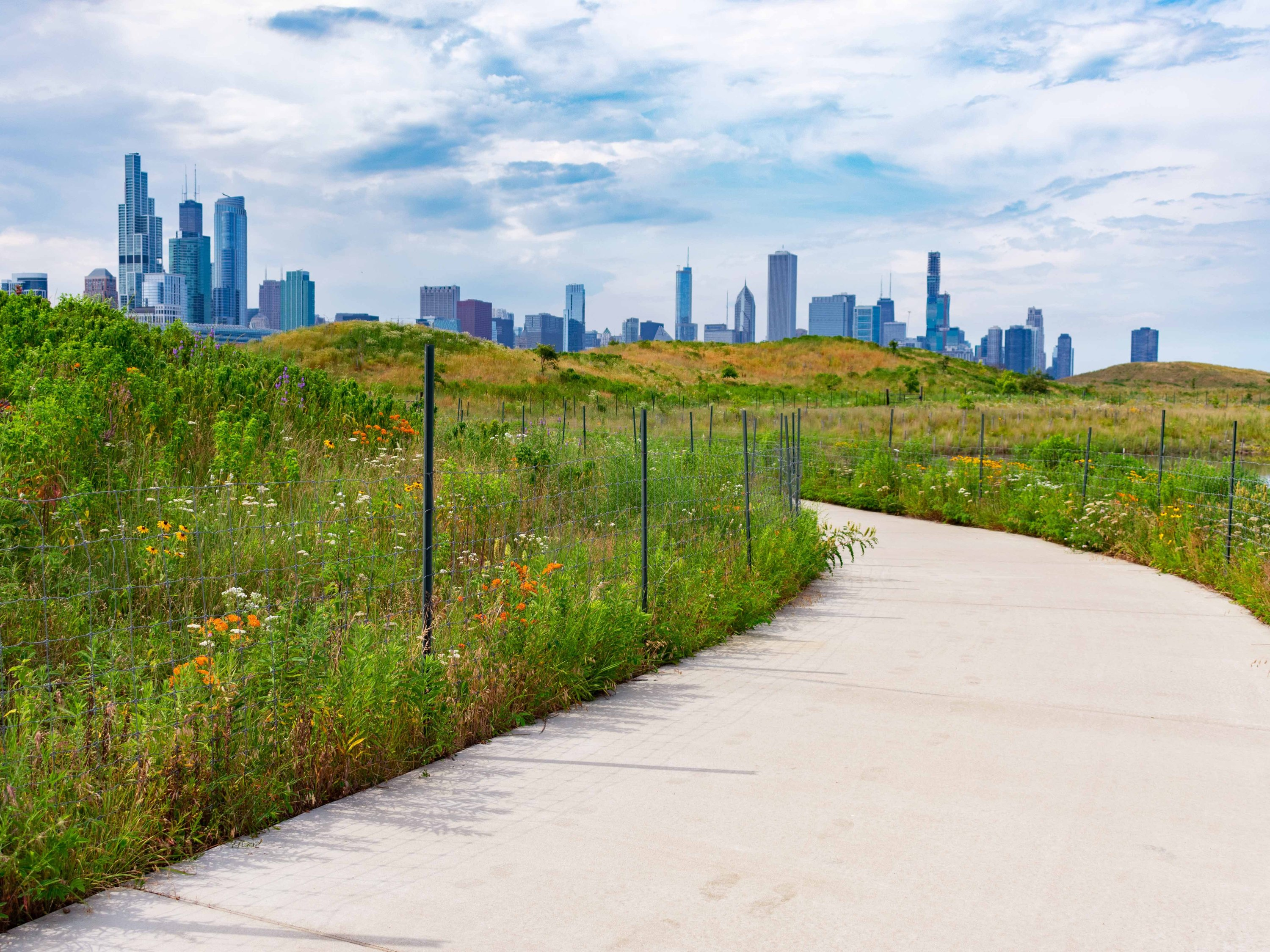 northerly island, chicago, skyline, park, northerly, outdoor, outside, nature