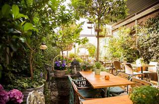 Jardín Secreto de Salvador Bachiller
