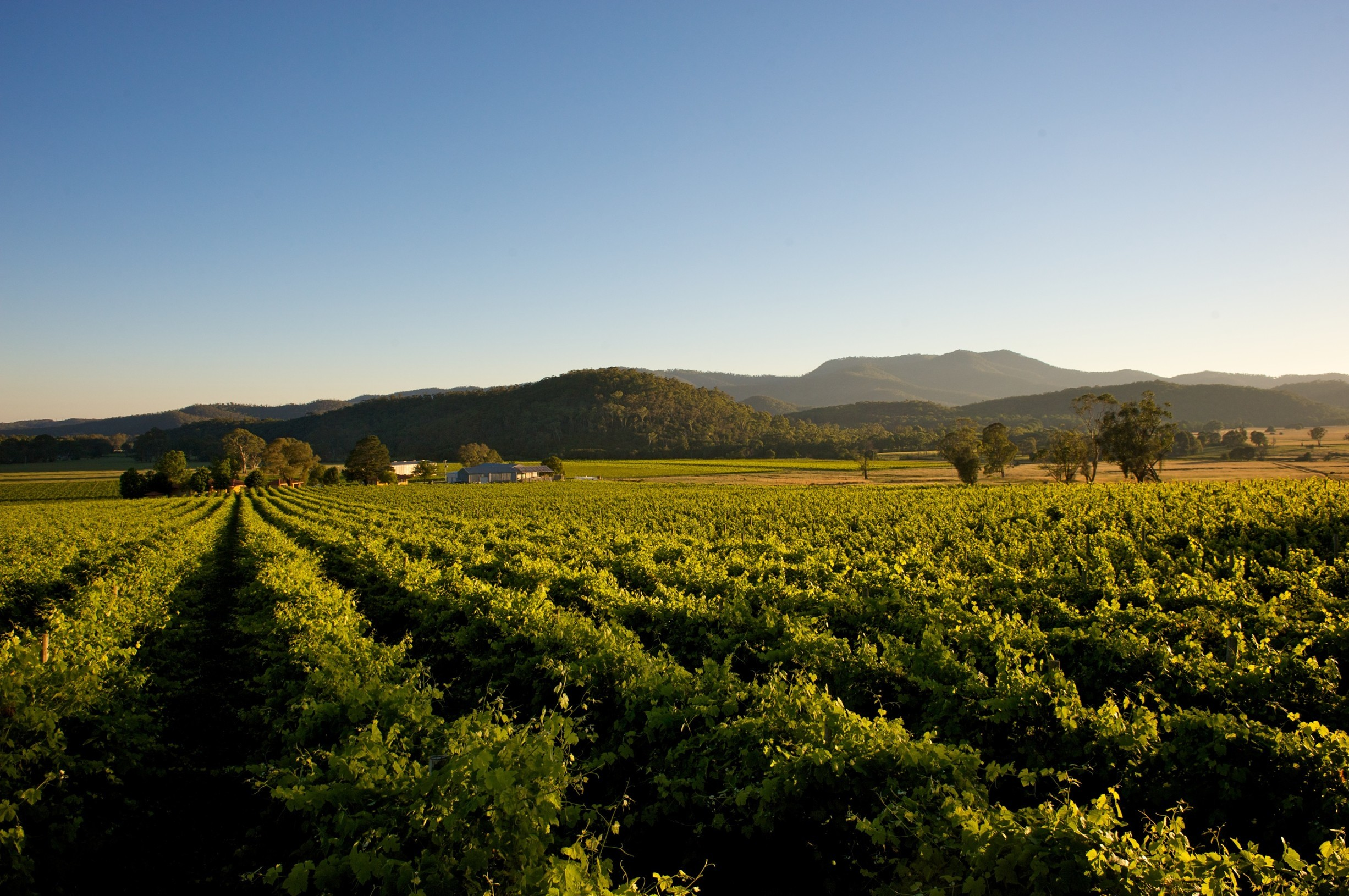 Underrated holiday destinations to visit in Victoria