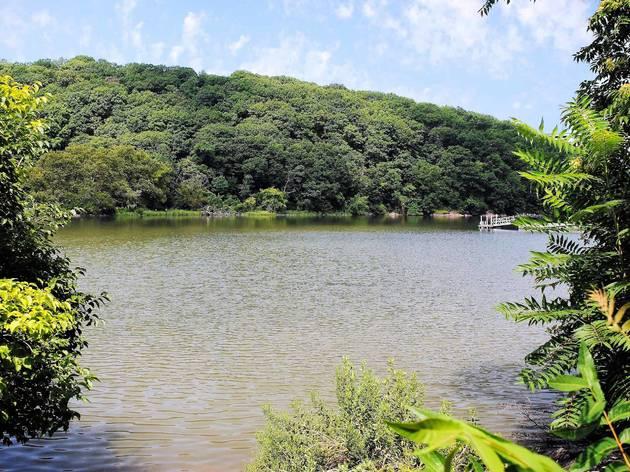 Inwood Park Spuyten Duyvil Creek