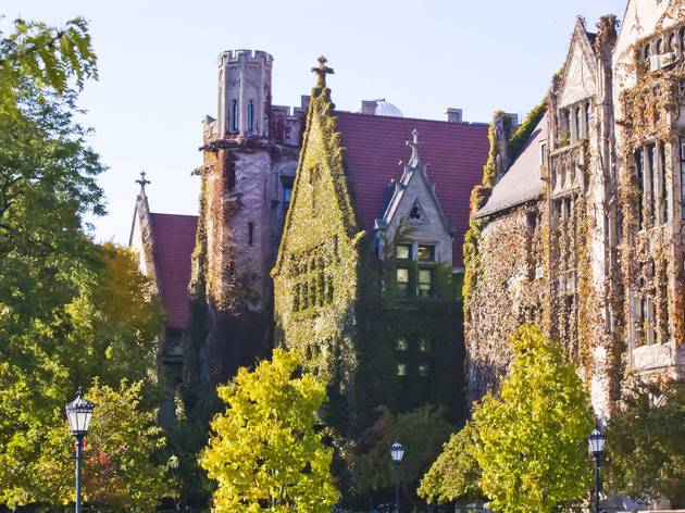 university of chicago, chicago, historic building, downtown, south side, shutterstock