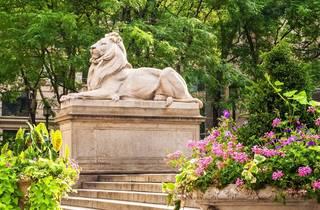 NYPL Lions