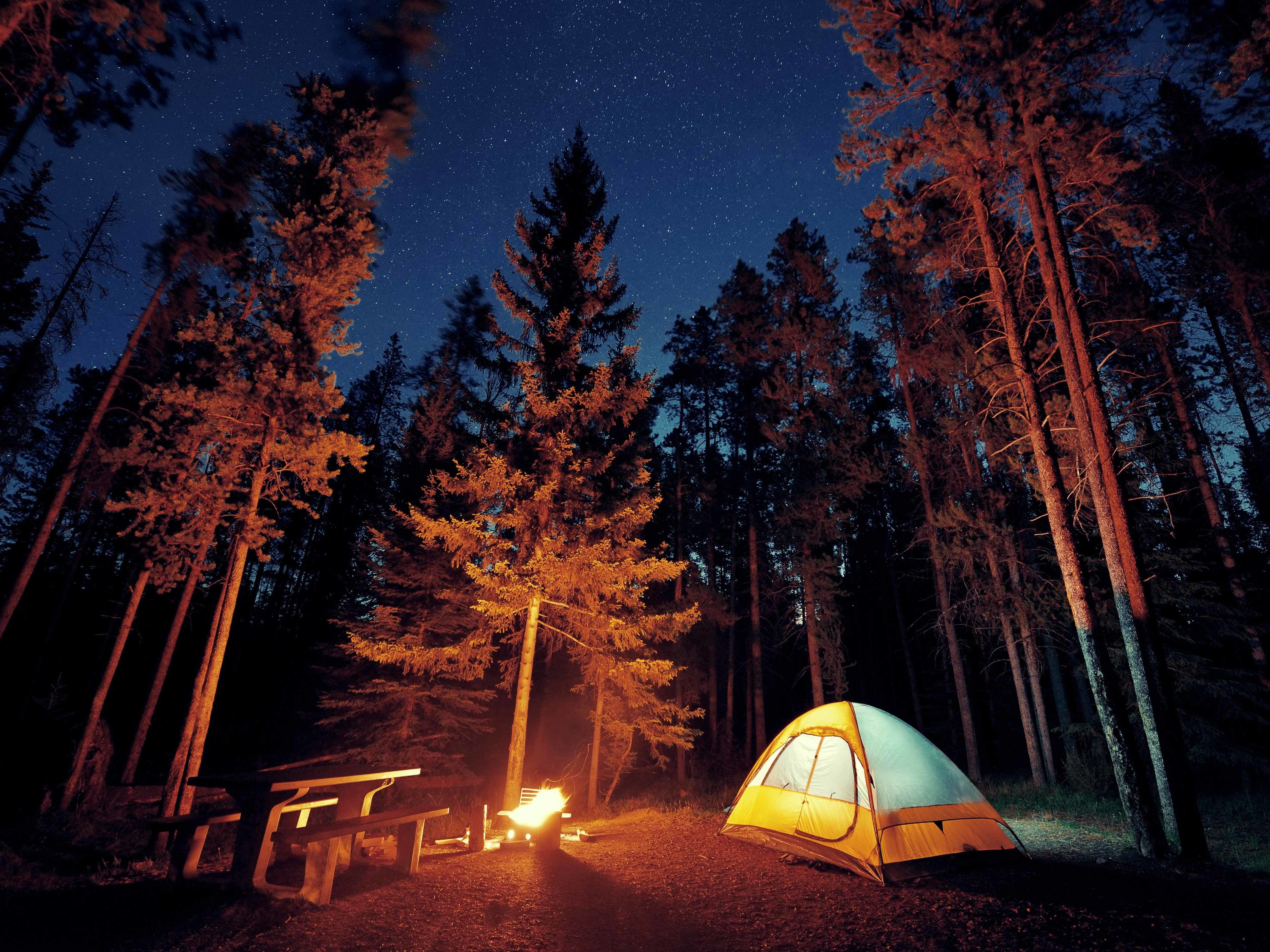 The best places to go camping near NYC