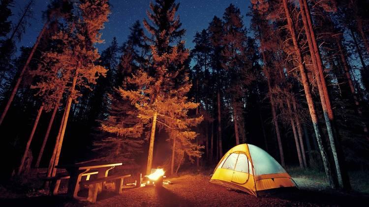 Camp tent crop