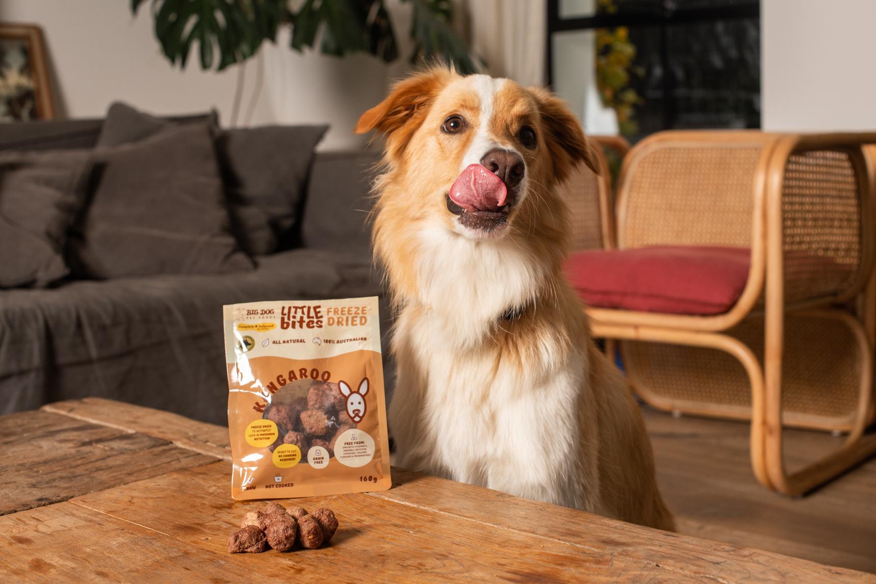 Dog and treats Petstock