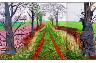 David Hockney 'A closer winter tunnel'  Art Gallery of New South Wales