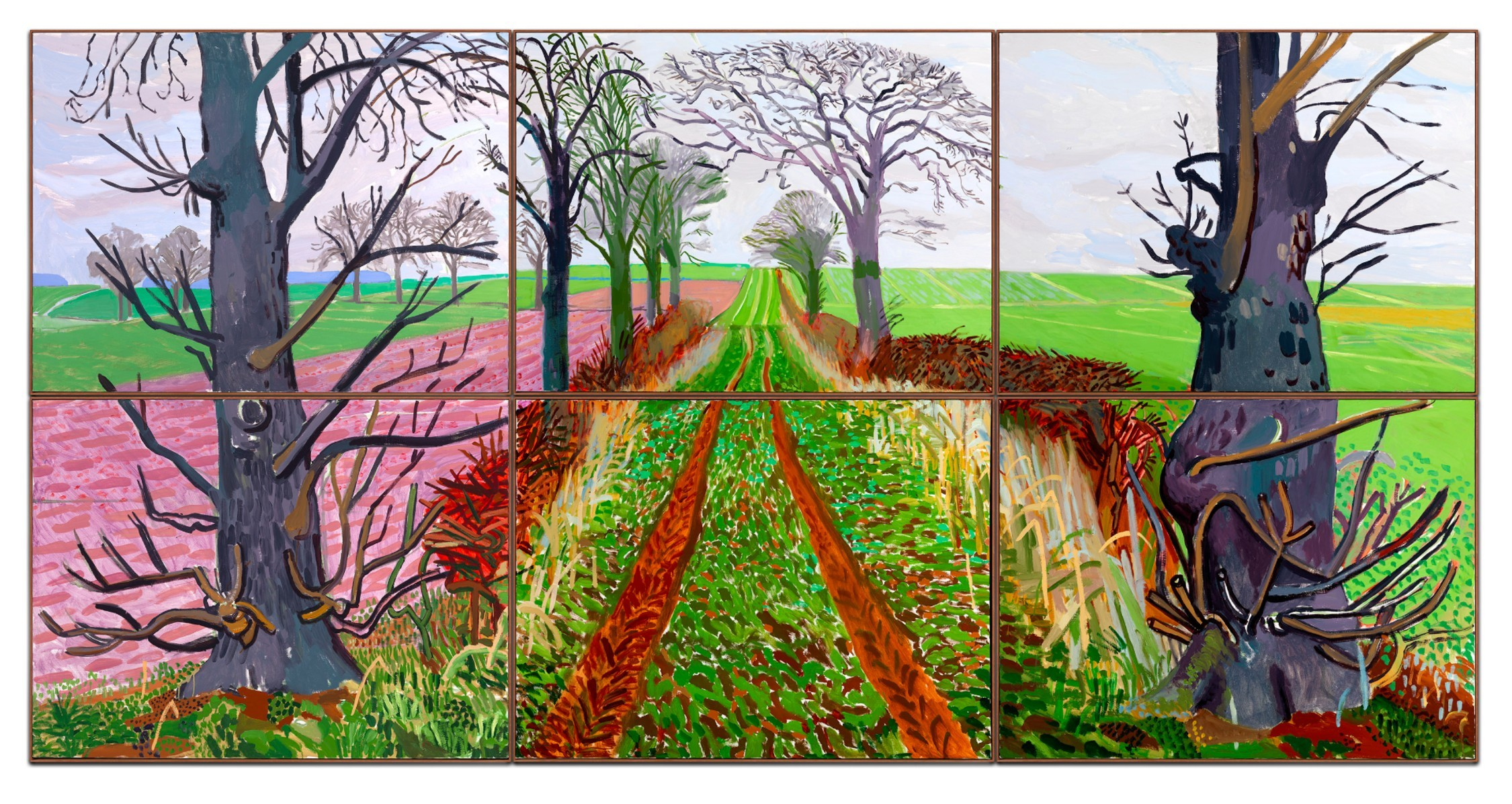 David Hockney 'A closer winter tunnel'  Art Gallery of New South Wales