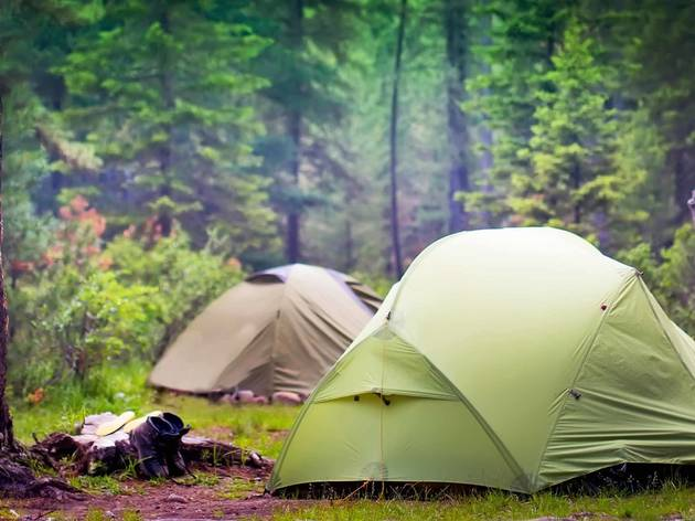 What to know about camping in 2020