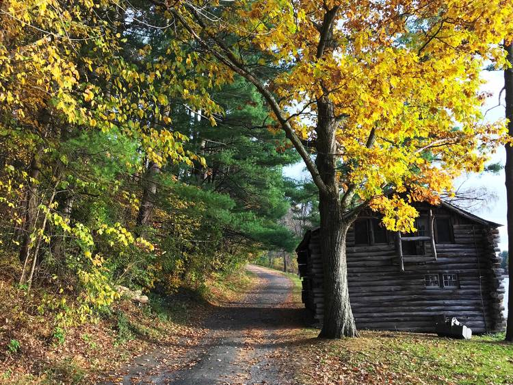 Taconic State Park