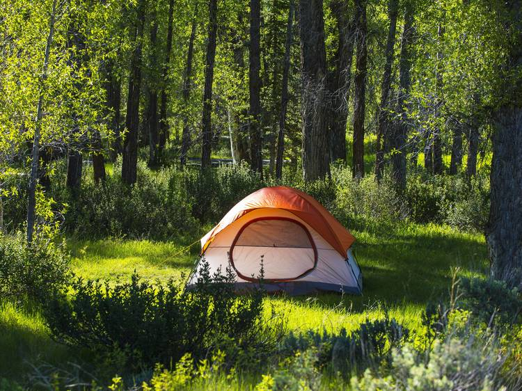 Gunks Campground