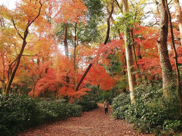 The least crowded places in Tokyo