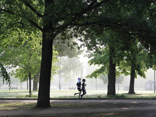Two people jogging through a park