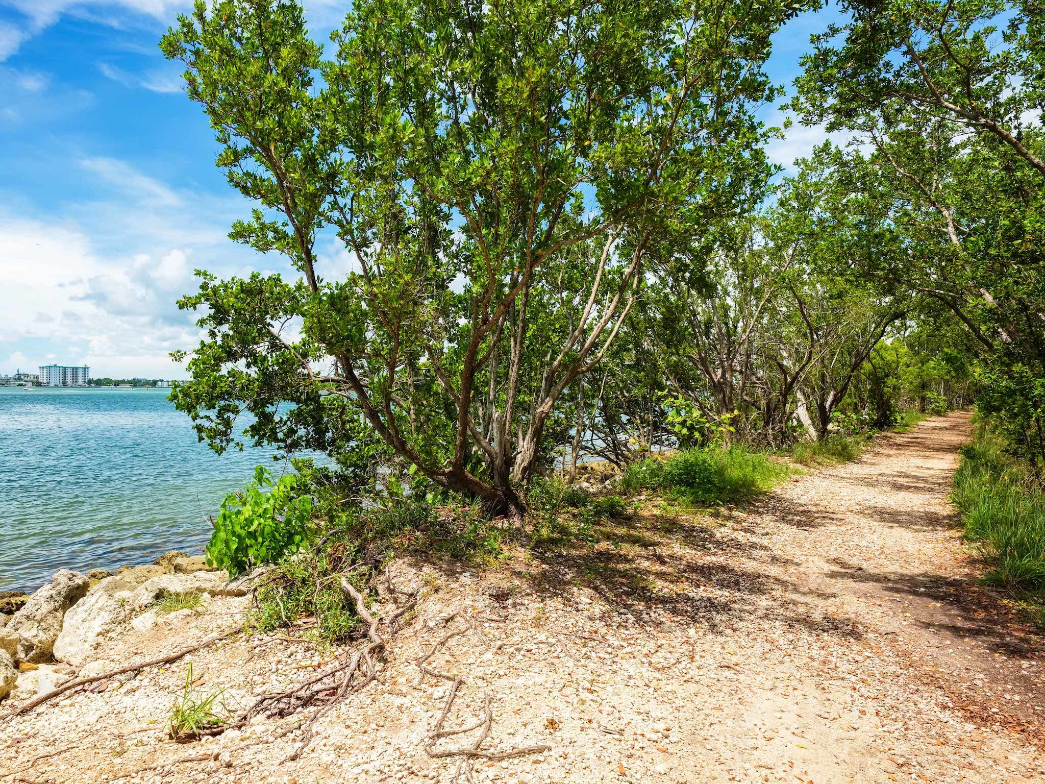 The best spots for hiking in Miami