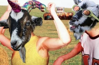 Photograph: Courtesy of The Oxford v Cambridge Goat Race