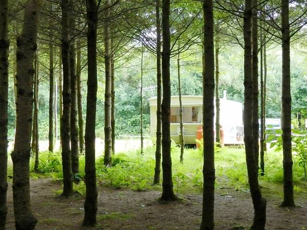 Ashbourne Woods