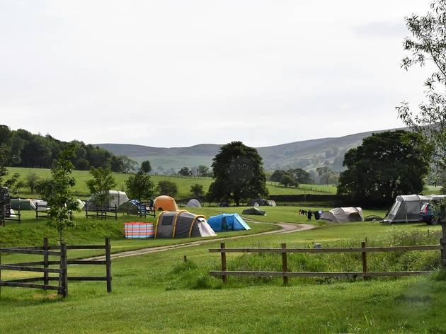 Catgill Farm Camping & Glamping