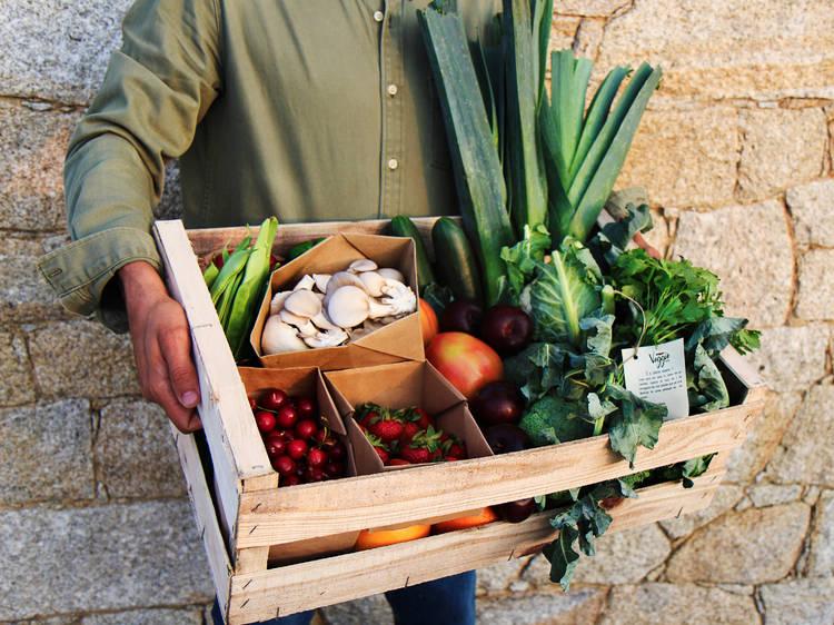 Serviços de entrega de produtos frescos ao domicílio no Porto