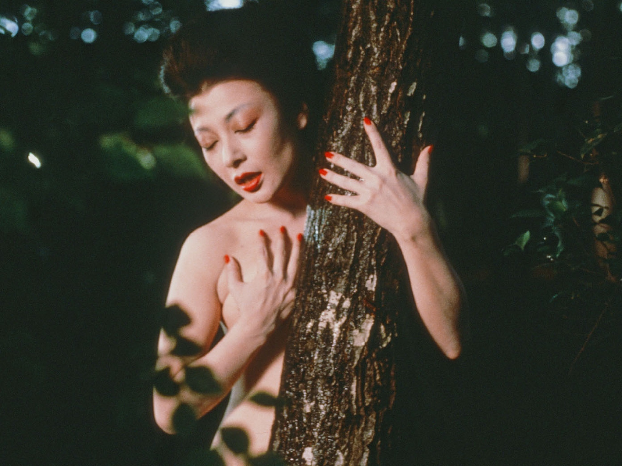 Filme, Cinema, A Senhora de Karuizawa (1982)