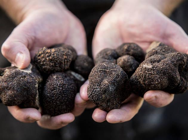 Truffles grown in NSW