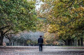 Victoria Park Ballarat tree-lined walk