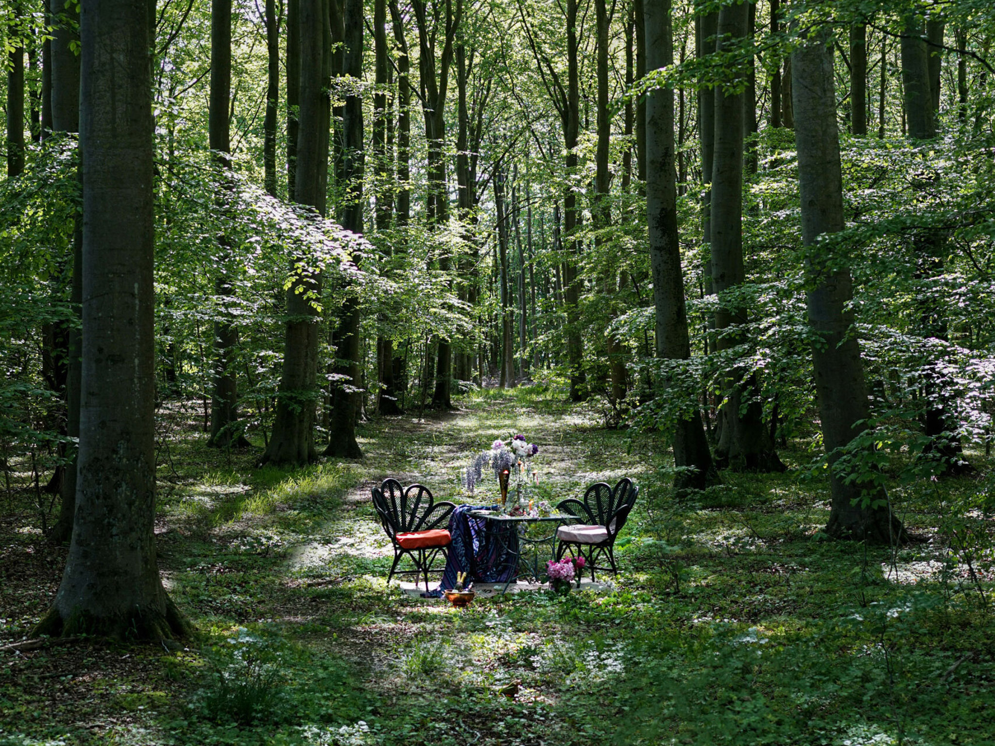 You can dine at isolated tables in a Swedish forest