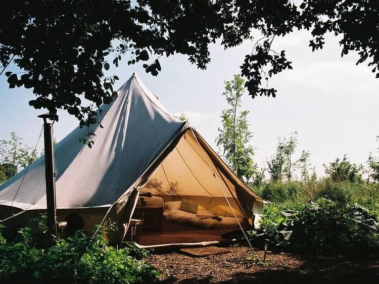 The Farm Camp, Wiltshire