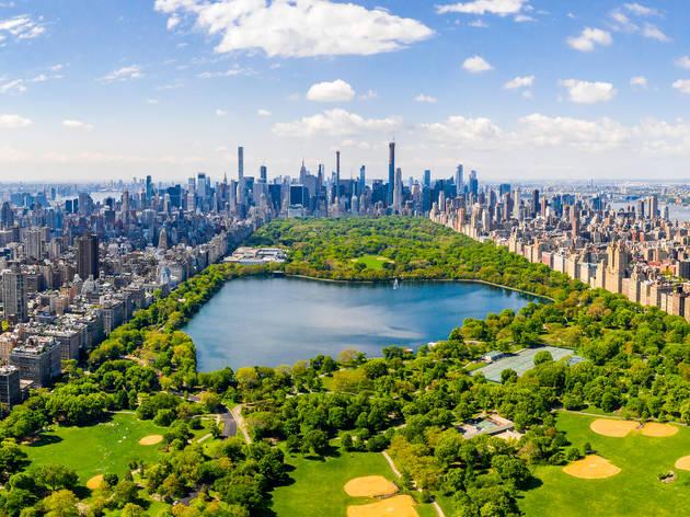 NYC summer skyline central park