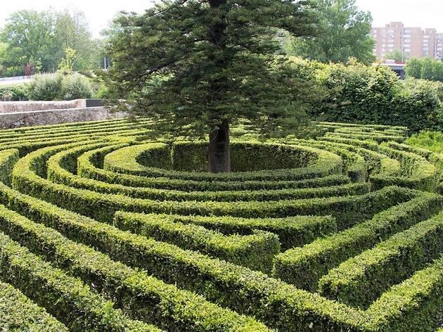 Labirinto de buxo da Quinta da Prelada