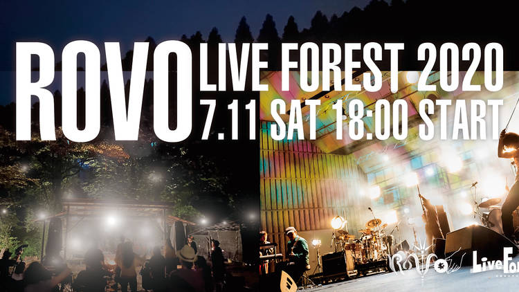 ROVO LIVE FOREST 2020