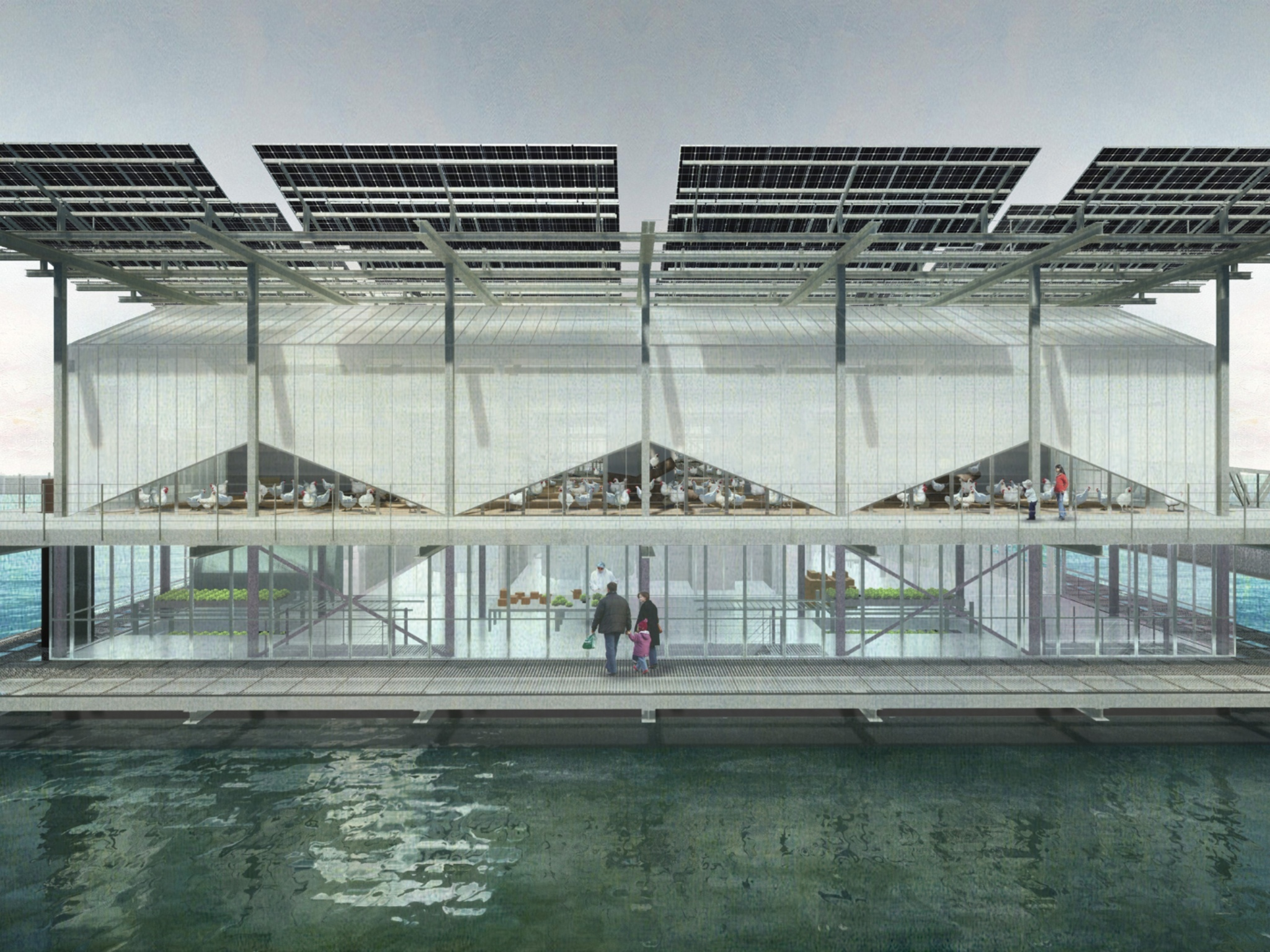 Rotterdam is getting a floating chicken farm