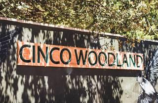 Cinco Woodland
