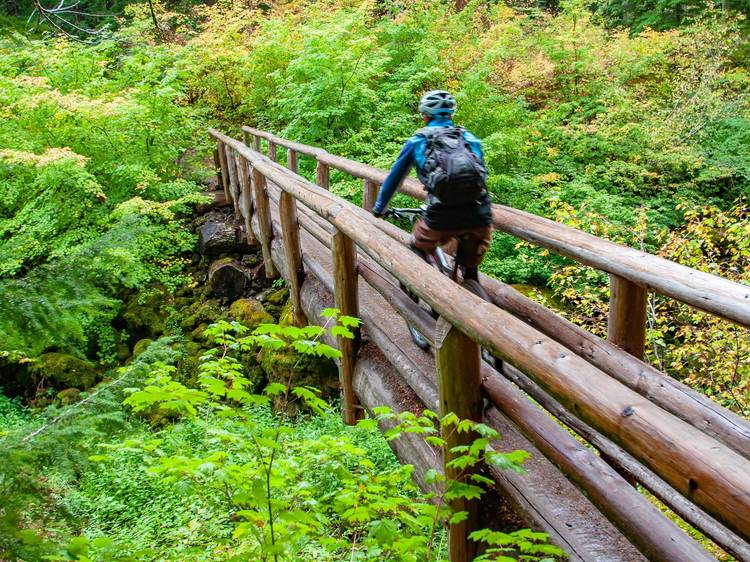 McKenzie River Trail   Bend, OR