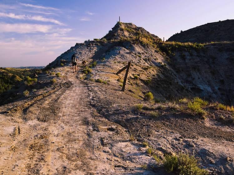 North Dakota: Spot antelope along the Maah Daah Hey Trail