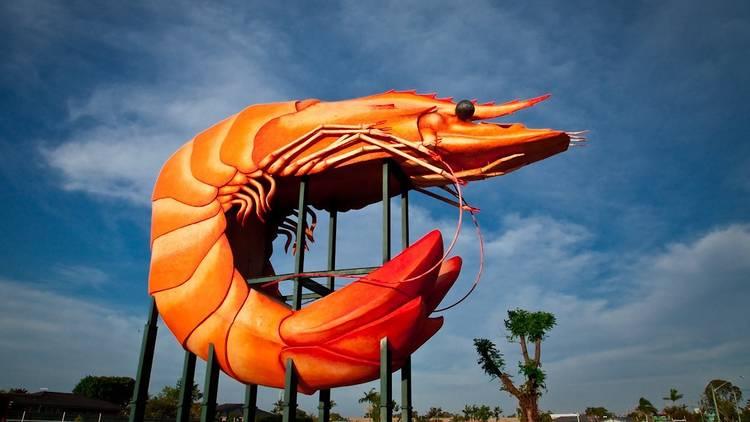 The big prawn in Ballina