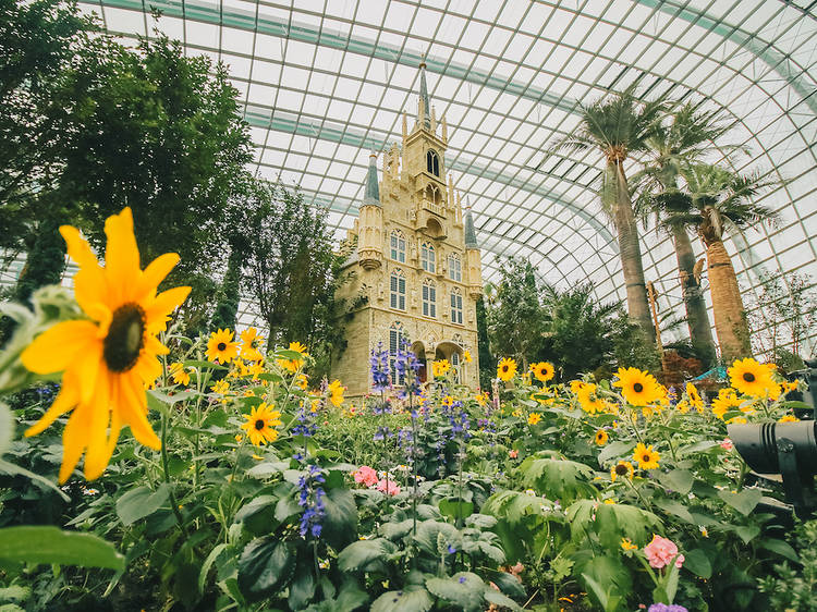 Stop and smell the roses at Gardens by the Bay