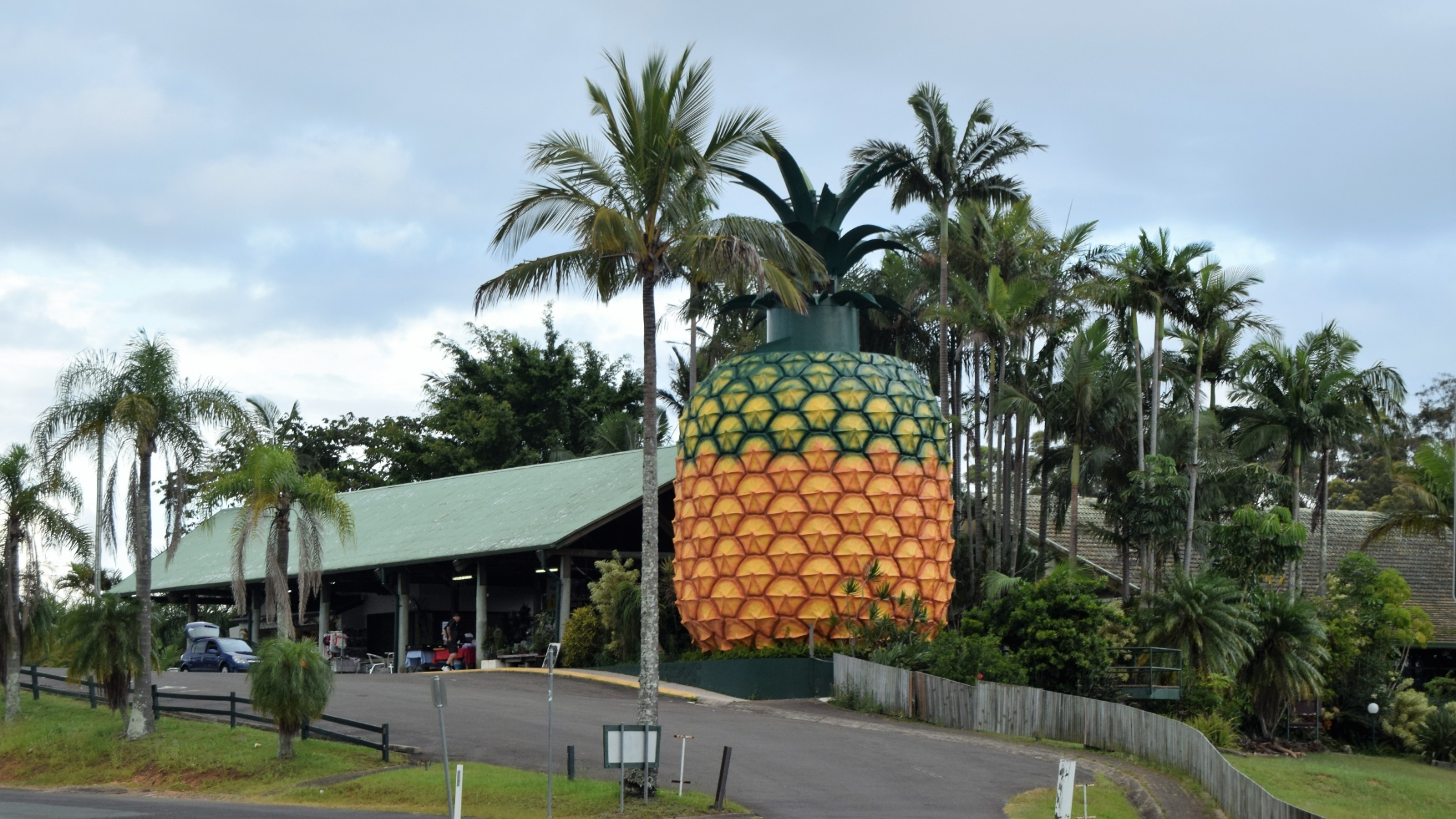 The big pineapple surrounded by palm trees