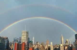 rainbow nyc